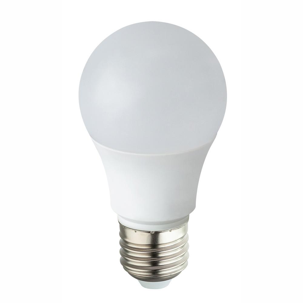Globo LED BULB 10670-2